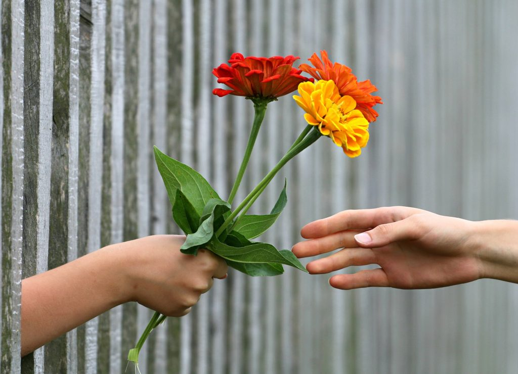 handing-off-flowers-through-fence