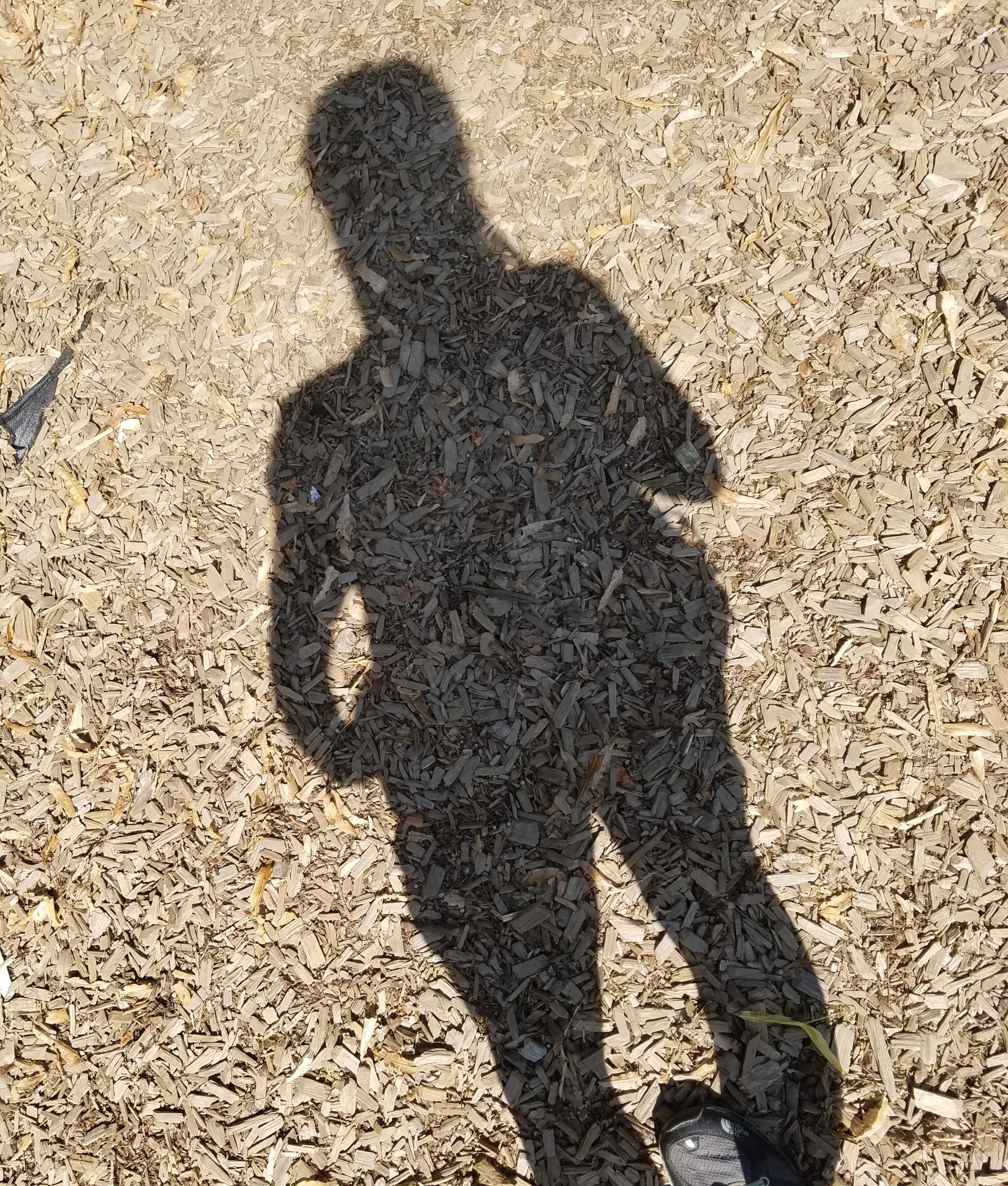 womans-shadow-on-the-ground